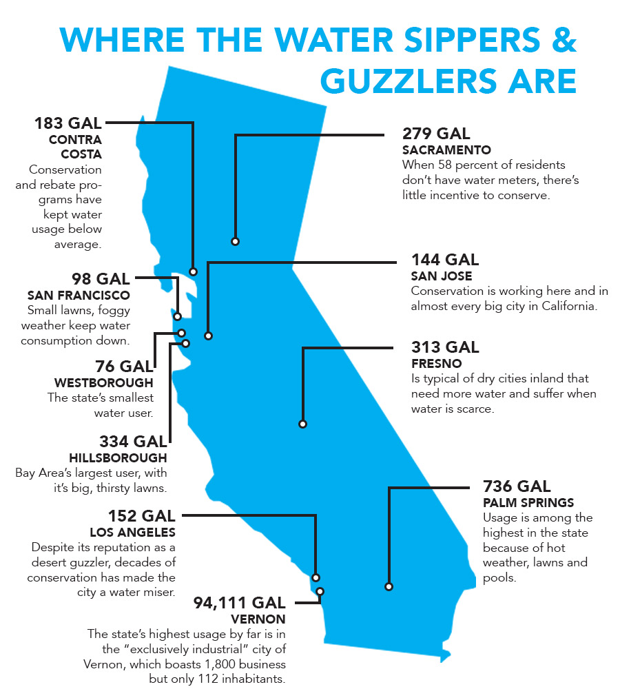 WATER-SIPPERS-AND-GUZZLERS