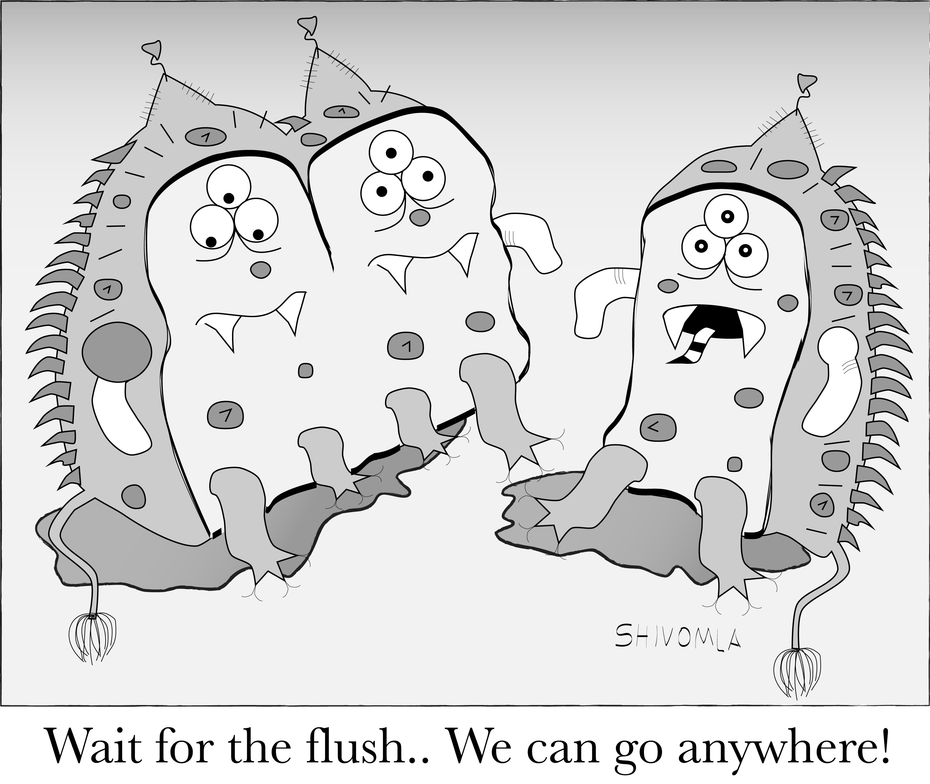Flush_Bacteria_color