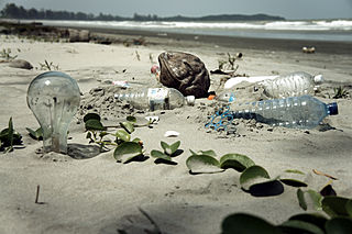 320px-Water_Pollution_with_Trash_Disposal_of_Waste_at_the_Garbage_Beach