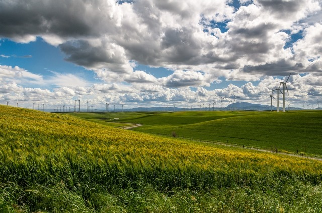 wind-farm-1209784_960_720